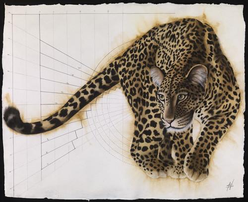 Nikki Stevens, Golden Section Leopard III (Hungerford Gallery)