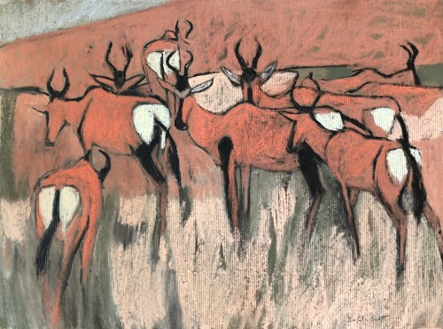 Dafila Scott, Red Hartebeest in the Kalahari (London Gallery)