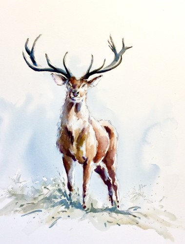 Julia Cassels, Wintery Stag (Hungerford Gallery)
