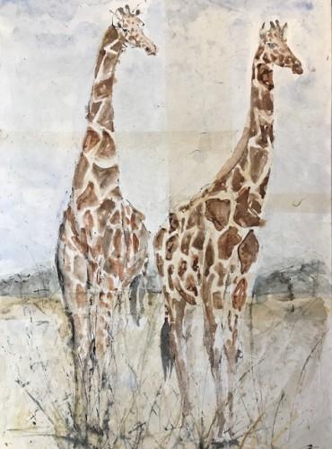 Christine Seifert, Giraffes (Framed) (Hungerford Gallery)
