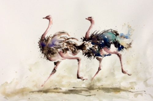 Julia Cassels, Ostrich Race (Hungerford Gallery)