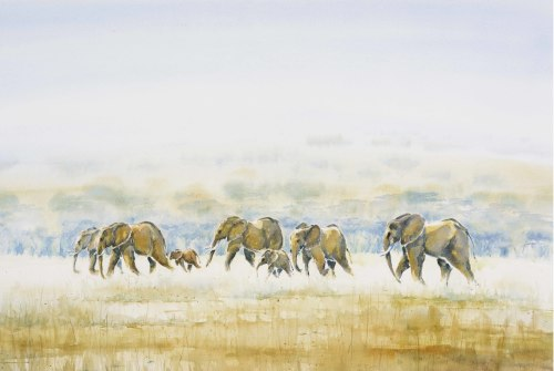 Julia Cassels, Elephants Across the Dambo (London Gallery)