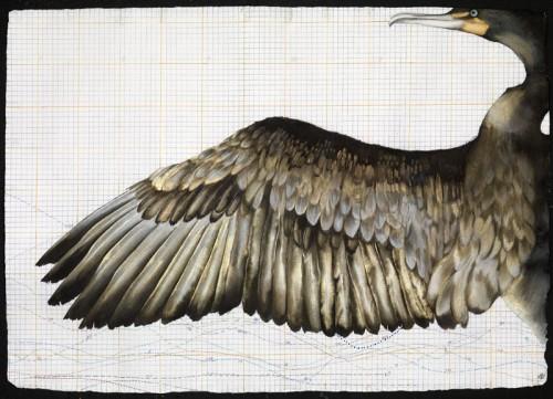 Nikki Stevens, Phoenix Rising (London Gallery)