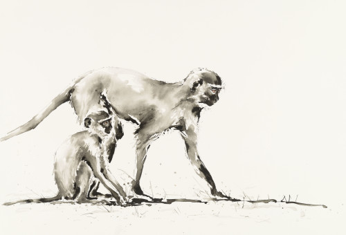 Julia Cassels, Ververt Monkeys