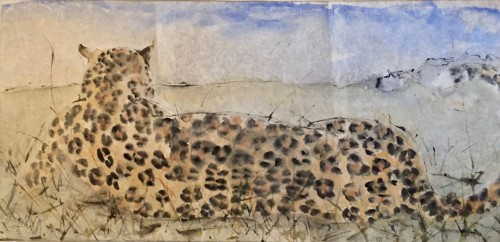 Christine Seifert, Leopard Scanning Distance (Hungerford Gallery)