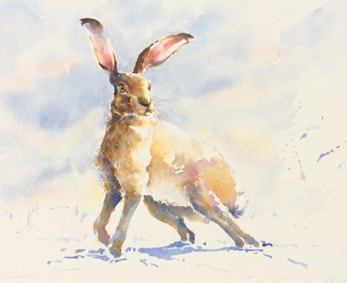 Julia Cassels, Winter Hare (Hungerford Gallery)
