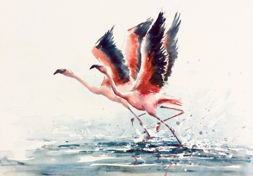 Julia Cassels, Flamingo Time (Hungerford Gallery)