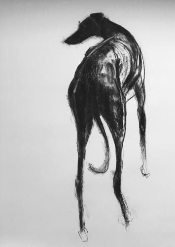 Sally Muir, Purdey (Hungerford Gallery)
