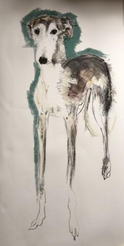 Sally Muir, Declan (Hungerford Gallery)