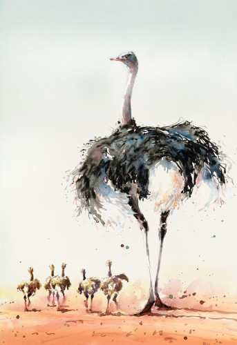 Julia Cassels, Ostrich and Chicks