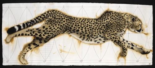 Nikki Stevens, Vortex Cheetah (Hungerford Gallery)