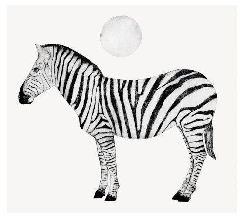 Beatrice Forshall, Zebra (Unframed)