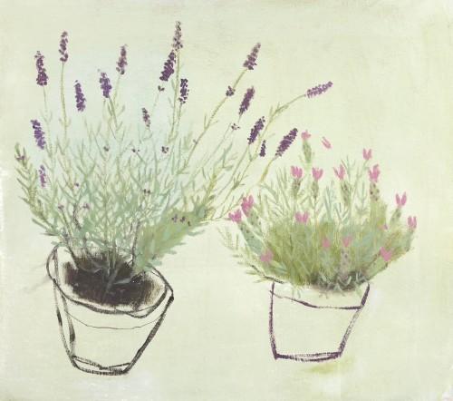 Jenny Lock, Lavenders