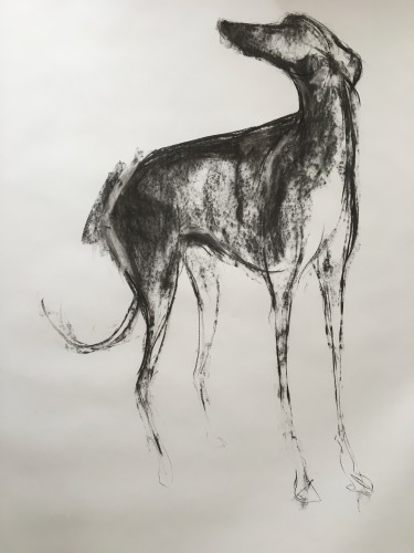 Sally Muir, Lily (Hungerford Gallery)
