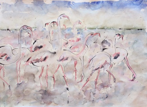 Christine Seifert, Flamingos (Hungerford Gallery)