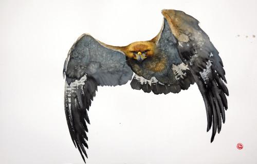 Karl Martens, Golden Eagle Flying II (Unframed)
