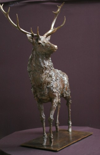 Adam Roud, Stag II (Hungerford Gallery)