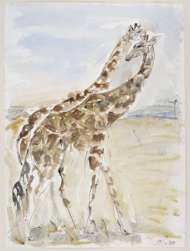 Christine Seifert, Two Giraffes (Unframed) (Hungerford Gallery)
