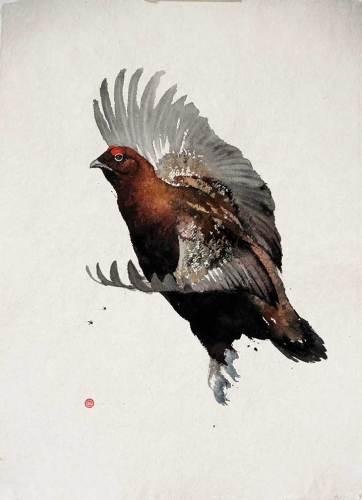 Red Grouse Flying (Unframed)