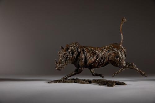 Jane Shaw, Running Warty - Warthog