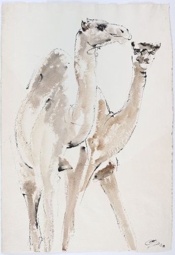 Christine Seifert, Two Camels (Unframed)