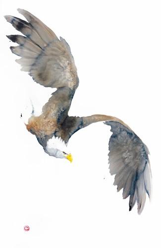 Karl Martens, Bald Eagle (Unframed) (Hungerford)