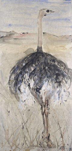 Christine Seifert, Ostrich