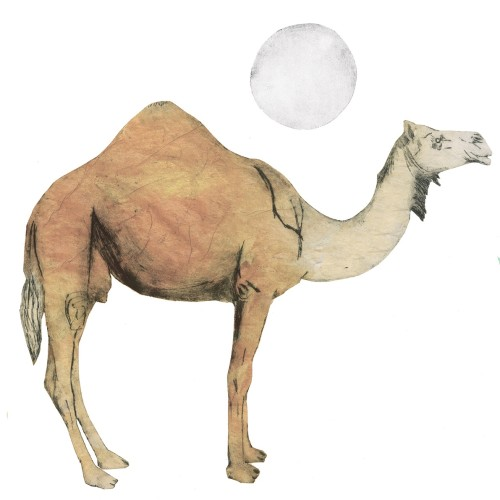 Beatrice Forshall, Camel (Unframed)