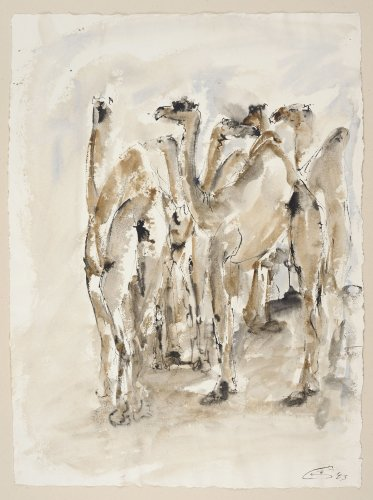 Christine Seifert, Group of Camels (Unframed) (Hungerford Gallery)