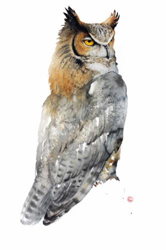 Great Horned Owl (framed)