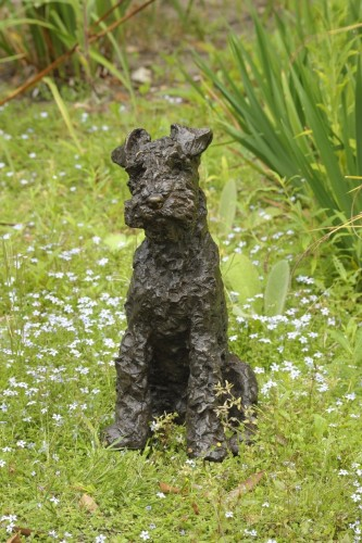 Rosemary Cook, Parsley - Welsh Terrier