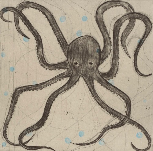 Kate Boxer, Octopus (Mounted)
