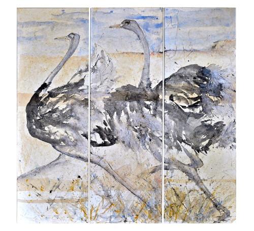 Christine Seifert, Ostrich Triptych (Hungerford Gallery)