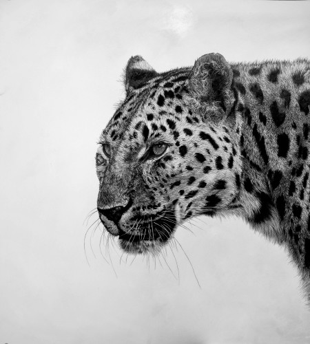 David Hunt, Leopard I (London Gallery)
