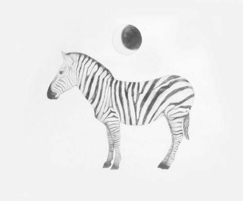 Beatrice Forshall, Zebra (Mounted)