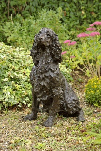 Rosemary Cook, Dash - Springer Spaniel