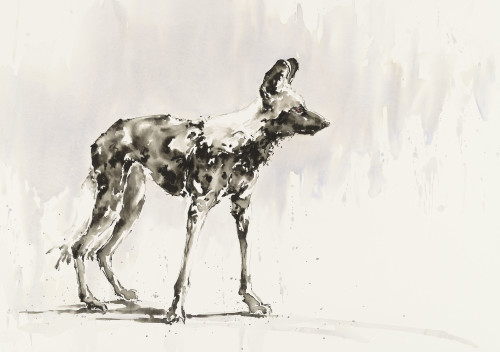 Julia Cassels, Dog Days (Hungerford Gallery)