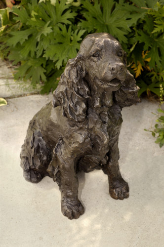 Rosemary Cook, Bonnie - Cocker Spaniel (Hungerford Gallery)