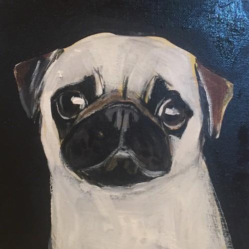 Robert James Clarke, Pug (Hungerford Gallery)