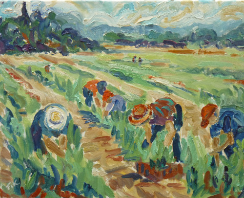 Fi Katzler, Harvest time at Callas (London Gallery)