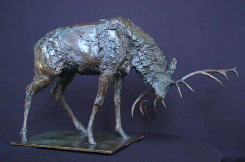 Adam Roud, Stag (Hungerford Gallery)