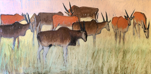 Dafila Scott, Eland on the Move (Hungerford Gallery)