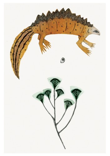 Beatrice Forshall, Great Crested Newt (Unframed)