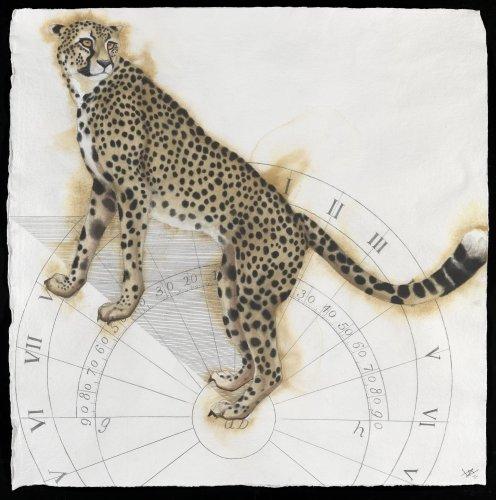 Nikki Stevens, Sundial Cheetah (Hungerford Gallery)
