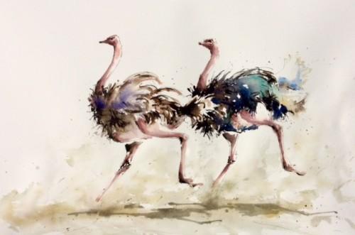 Julia Cassels, Ostrich Race (Hungerford Gallery)
