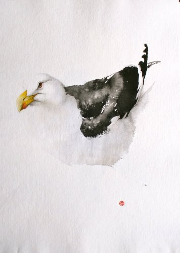 Great Black Backed Gull (Unframed) (Hungerford Gallery)