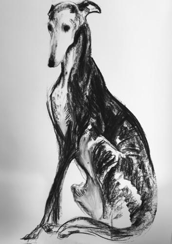Sally Muir, Grace (London Gallery)