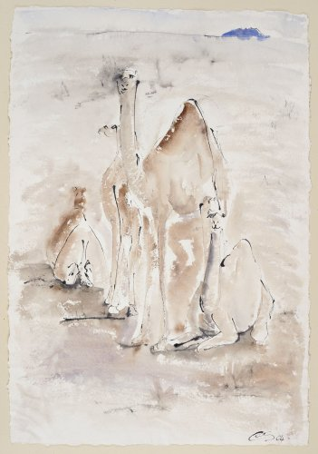 Christine Seifert, Camels (Unframed) (Hungerford Gallery)