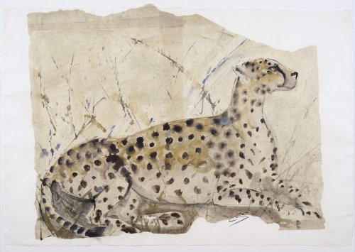 Christine Seifert, Cheetah (Unframed) (Hungerford Gallery)