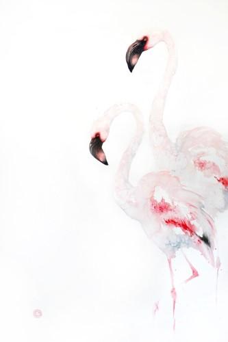 Lesser Flamingos (Unframed) (Hungerford Gallery)